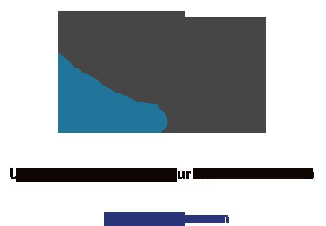Wordpress SMS